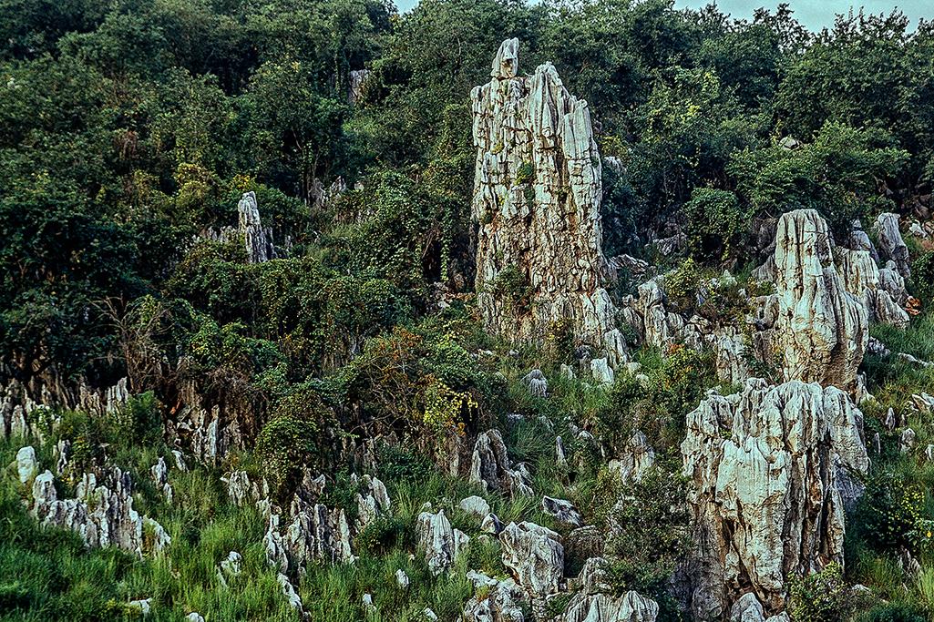 西区-石林