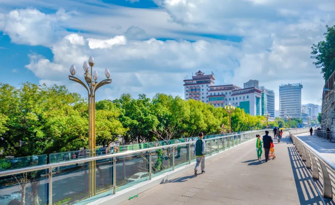 喜迎党代会·东区这五年 || 山水织锦绣 绿色谱华章—东区生态文明建设综述